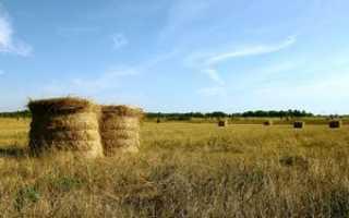 Социальная помощь фермерам в России