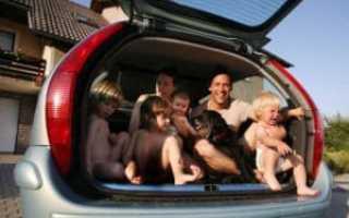 Автомобиль для многодетных семей от государства: как получить