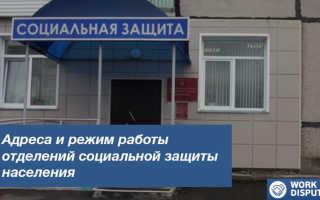 Социальная защита и поддержка в Самаре и Самарской области