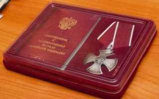 Социальная помощь и денежные выплаты кавалерам Ордена Мужества в России