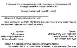 Региональный материнский капитал вНовосибирске иНовосибирской области: условия получения