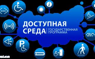 """Целевая государственная программа """"Доступная среда""""  для инвалидов: особенности и реализация программы"""