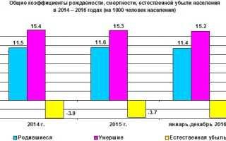 Региональный материнский капитал вЛипецке иЛипецкой области: условия получения