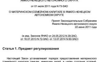 Материнский капитал в Салехарде и Ямало-Ненецком автономном округе: размер региональных выплат