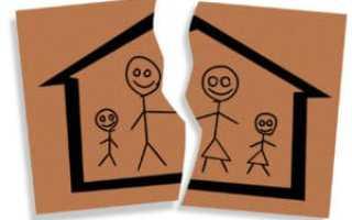 Госпошлина за развод: размер, особенности и пример расчета, особенности оплаты, штрафы
