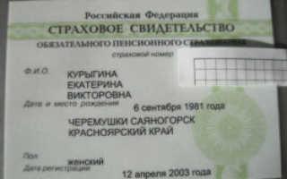Страховой номер индивидуального лицевого счета (СНИЛС): что это такое и зачем нужен