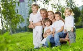 Льготы, права и привилегии многодетных семей: что положено и как получить, документы