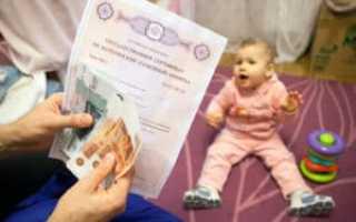 Детские пособия в Ярославле и Ярославской области: условия получения