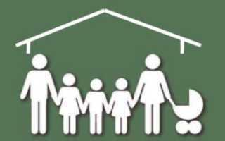 Налоговые льготы многодетным семьям: особенности и оформление