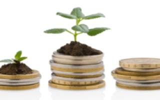 Страховая пенсия в России: размер, условия и порядок получения