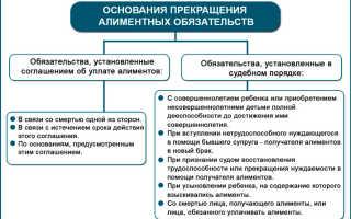 Освобождение от уплаты алиментов: образец искового заявления