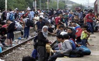 Социальная помощь беженцам и переселенцам в России
