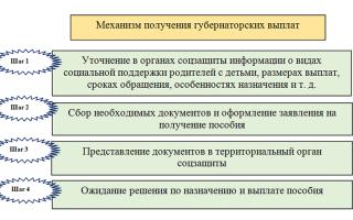 Пособия и выплаты на ребенка в Екатеринбурге: федеральные и региональные, размеры выплат
